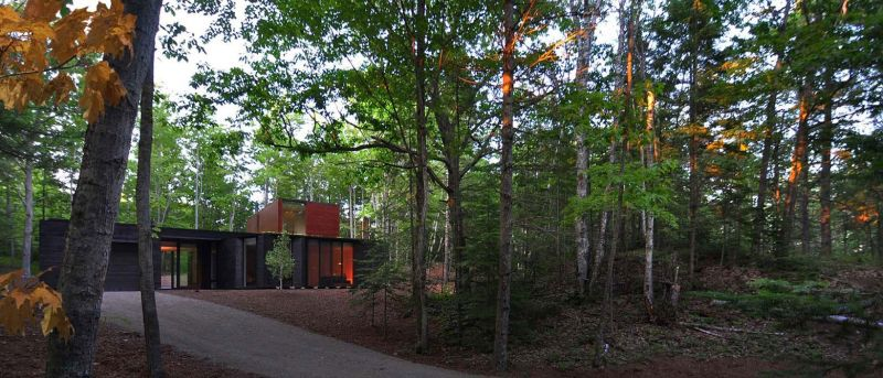 Pleated House forest surroundings