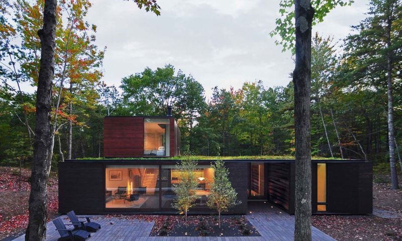 Forest Residence With A Wood And Glass Shell And A Green Roof