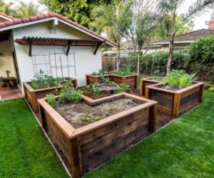 You Can Also Use Large Wooden Planters To Grow Vegetables. Just Make Sure  Theyu0027re Food Safe