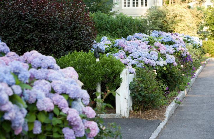 Home landscaping ideas to inspire your own curbside appeal - Small backyard landscape designs ...