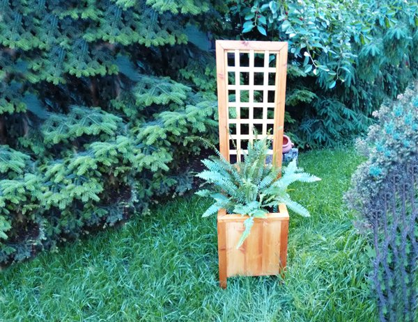 Combination of trellis and planter