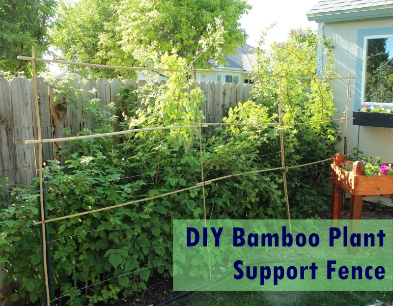 DIY Bamboo Plant Support Fence
