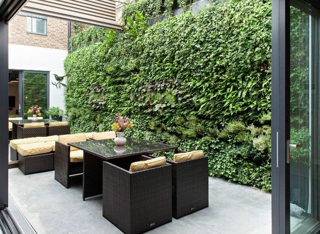 Density of your privet hedge