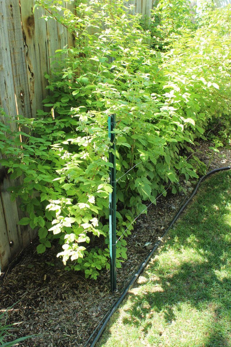 Existing retaining fence