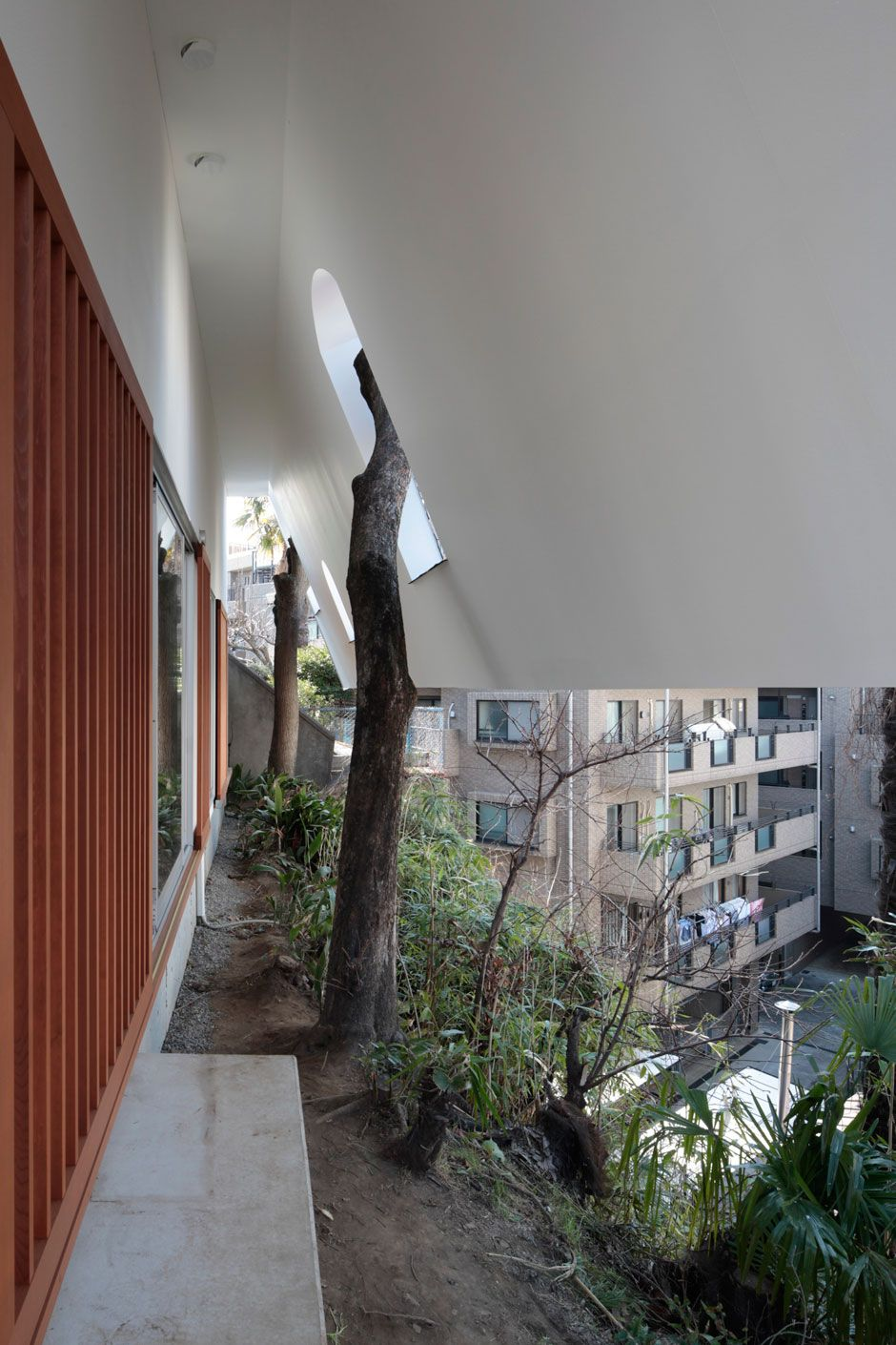 House and trees through rouf design