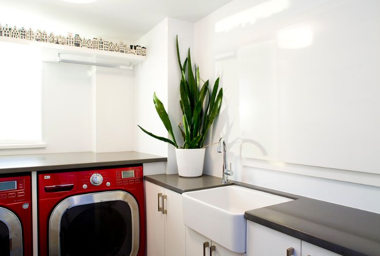 Laundry room decorate with a snake plant