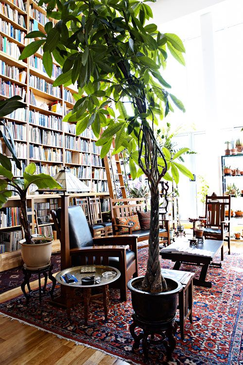 Libraries And Plants Make A Great Pair