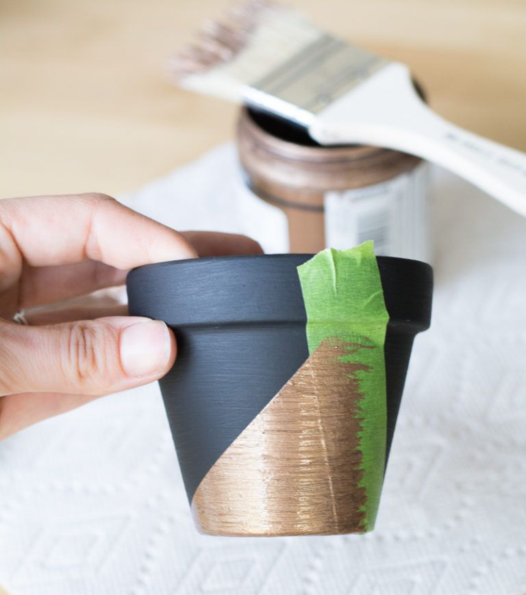 Modern Mini Painted Plant Pots Dry