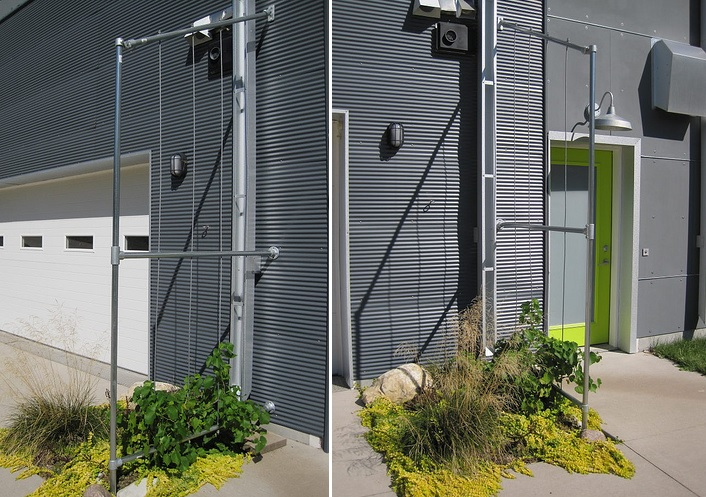 Modern trellis garden