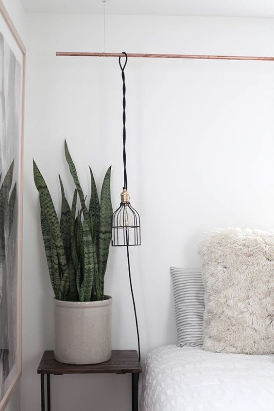 Perfect spot for a snake plant