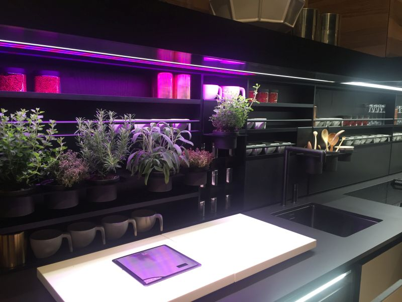 black kitchen design with purple led under cabinet lighting