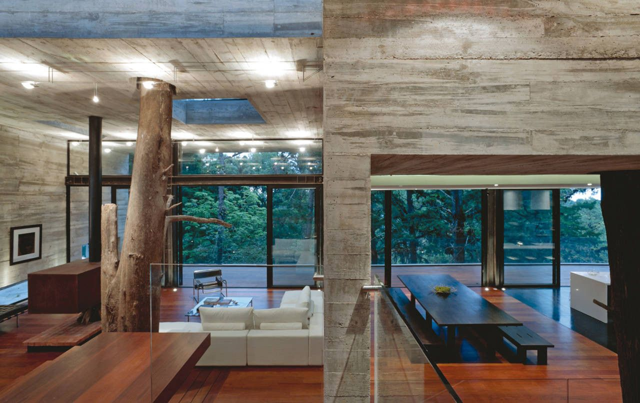 colorado concrete house with inside tree