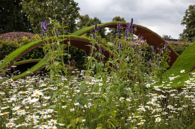 Backyard design art with suspended garden