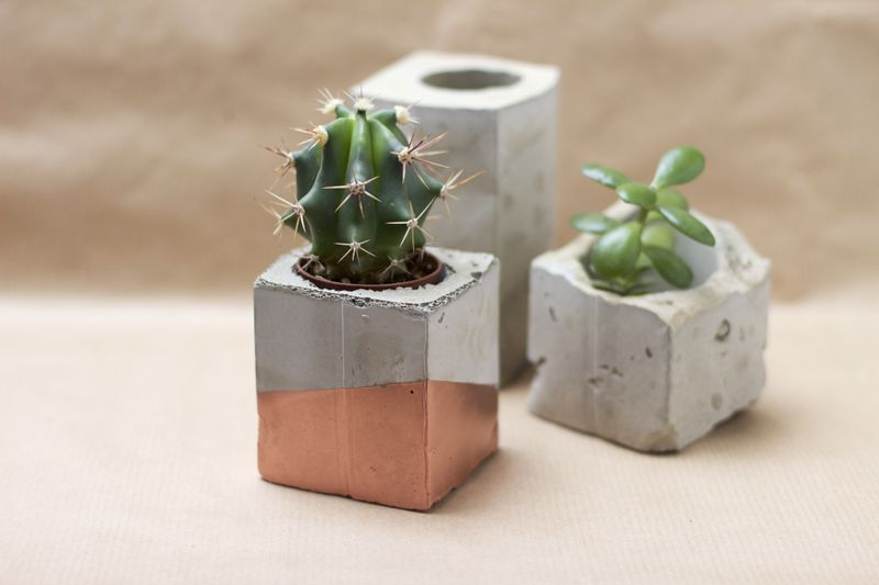 Card box or juice container to create concrete planters