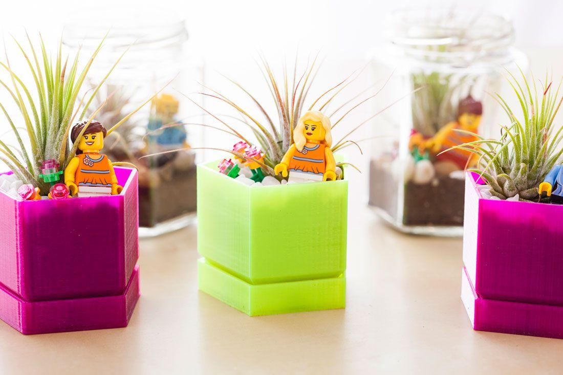 Colorful terrariums for cubicle decor