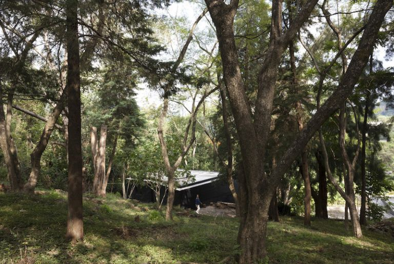 Contemporary cabin in Mexico forest view