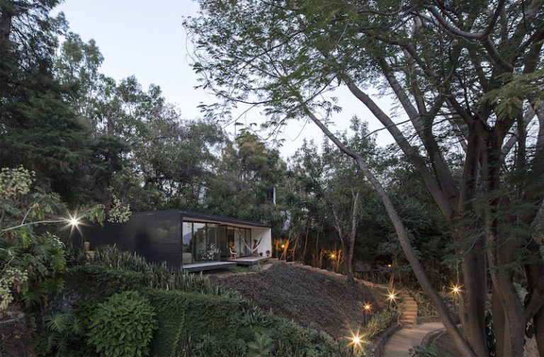 Contemporary Forest Shelter Breaks In Two For A Clean Look