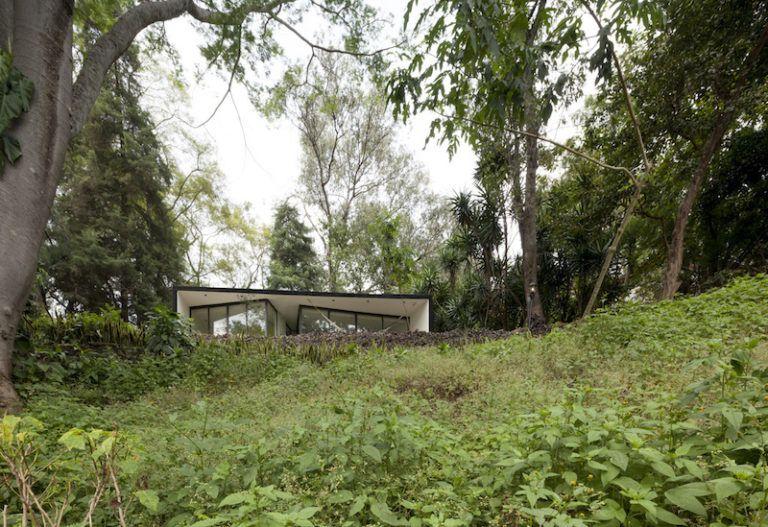Contemporary cabin in Mexico vegetation
