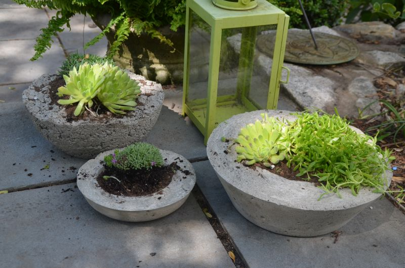 Creating larger containers from concrete for plants