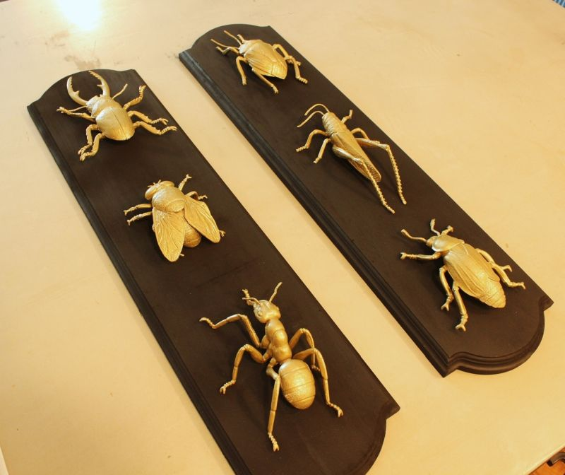 DIY Insect Taxidermy- arrange your gold painted bugs