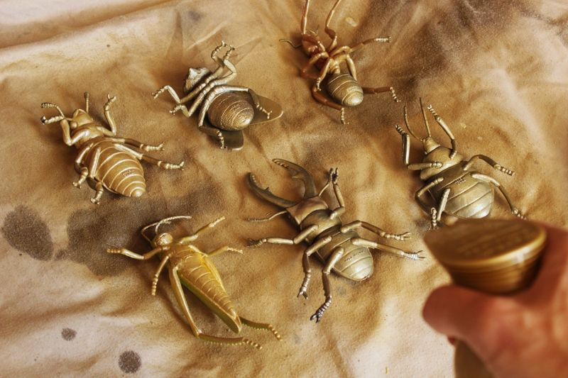 DIY Insect Taxidermy-play several coats