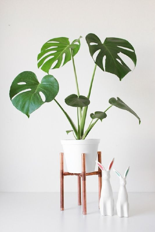 Delicieux DIY Pipe Plant Stand