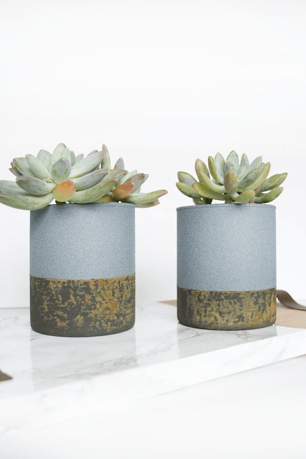 How To Craft Stylish Concrete Planters Of All Shapes And Sizes