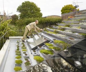 The House That Has An Entire Garden On Its Roof