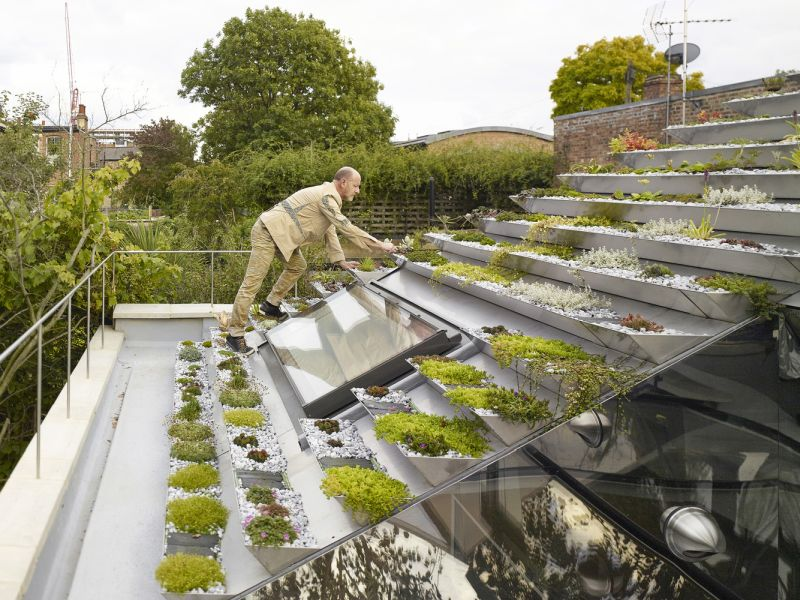 Garden House roof with planters