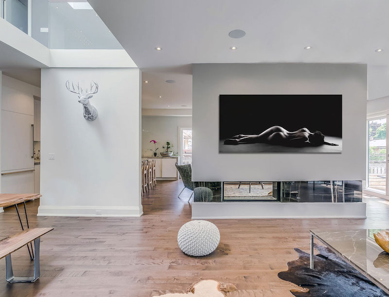 Garden Void House divider and fireplace