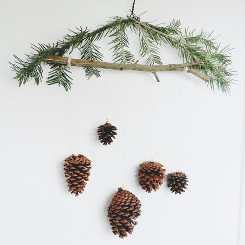 Pinecone mobile