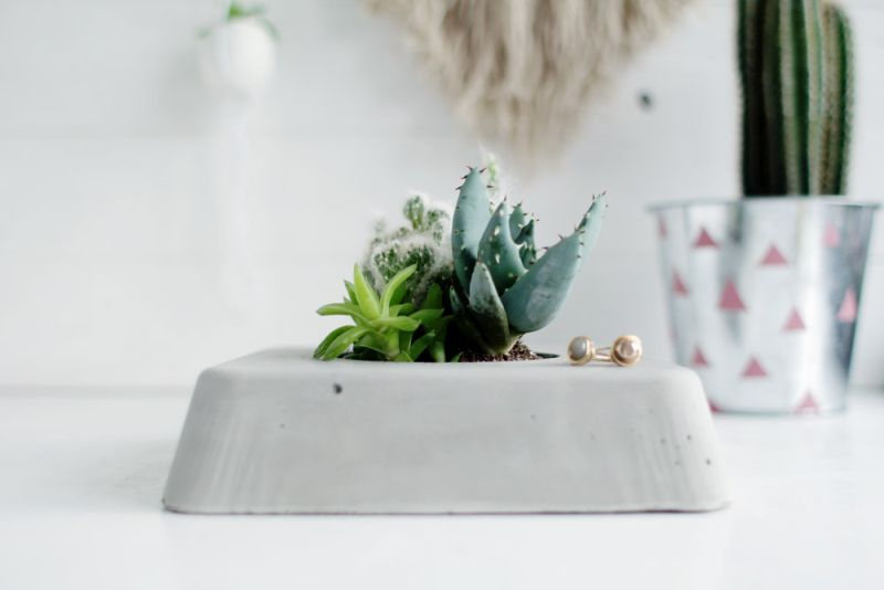 Simple succulent planter from concrete