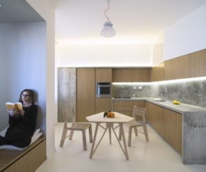 Two Flats Become An Apartment With A Levee-Inspired Design
