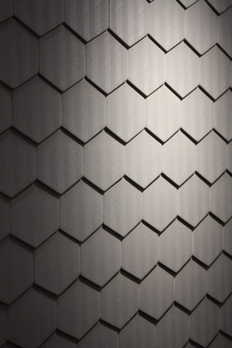 fish skin wall covering