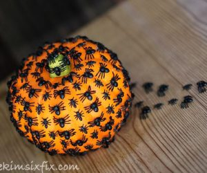 so go get your pumpkin carving tools and lets see what this years halloween dcor could look like - Pumpkin Decor