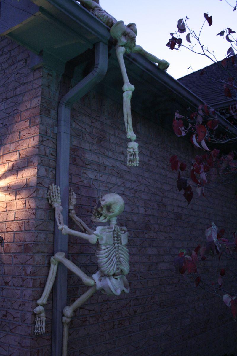 Cimbing wall Skeleton