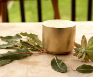 DIY These Cute Citronella Candles