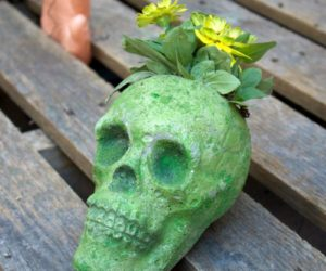 Make a Cement Skull Planter