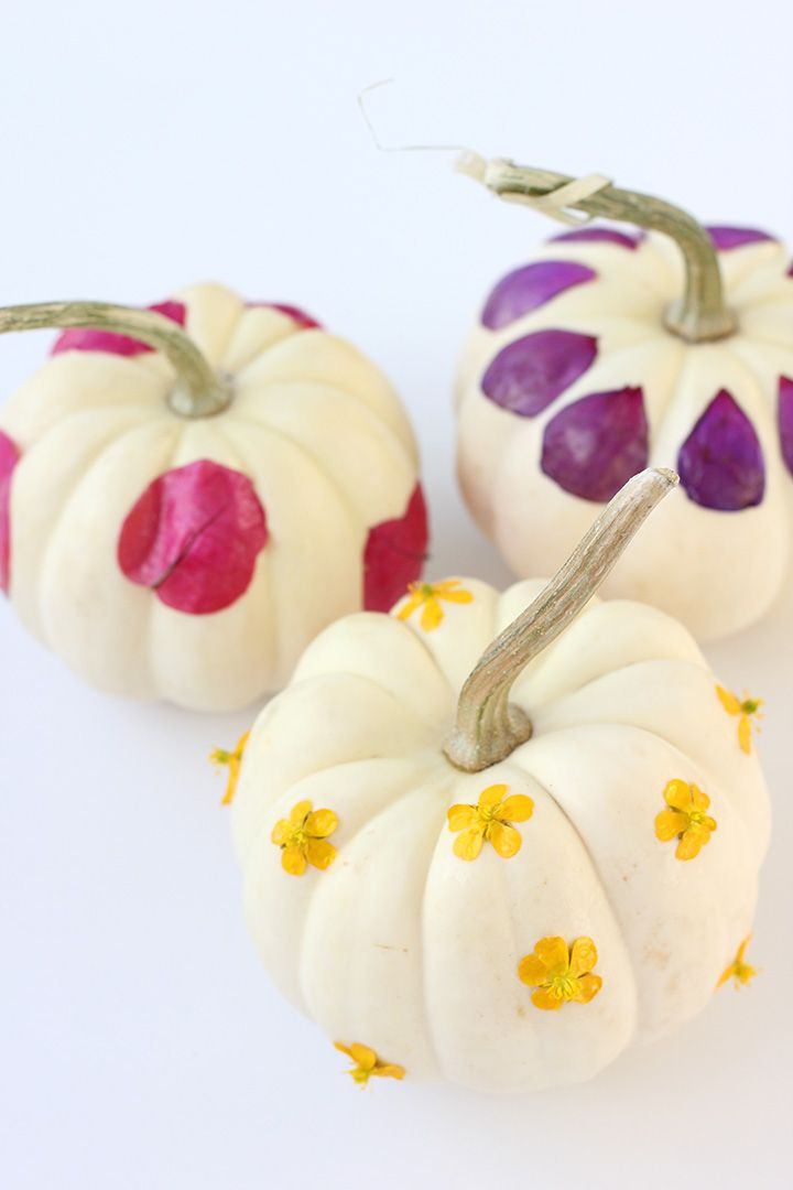 Decoupage flower pumpkins