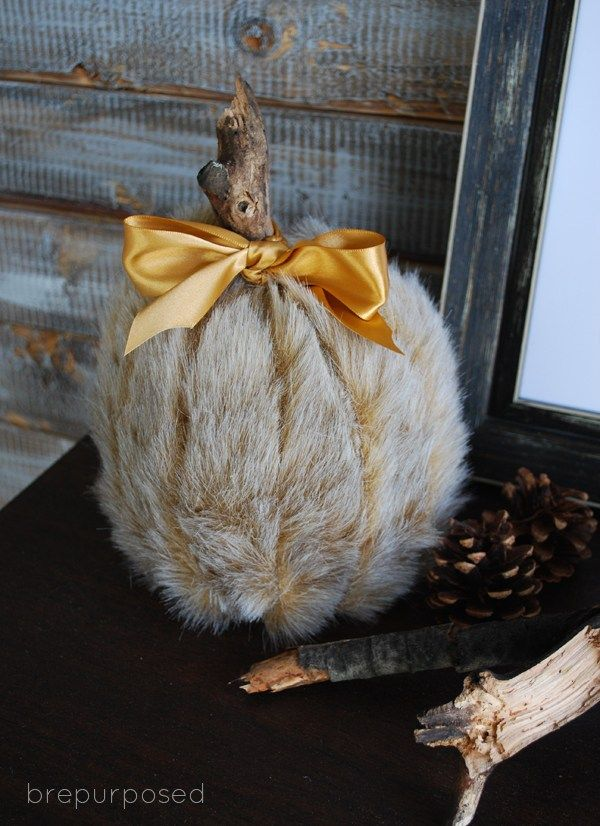 Fall in love fur pumpkin
