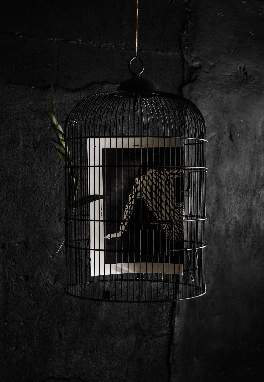 Halloween Cage Print