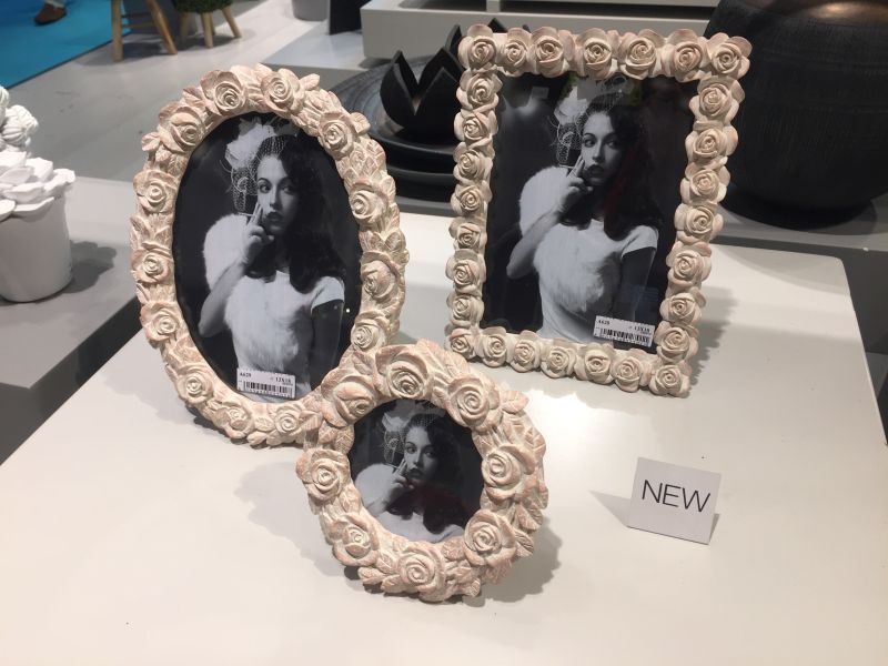 Pale color roses picture frames