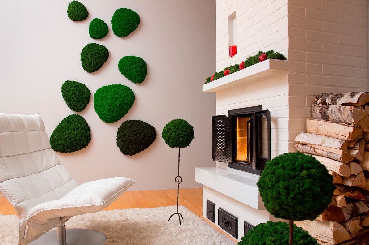indoor moss is a fuss free way to add a natural element to home decor. Black Bedroom Furniture Sets. Home Design Ideas