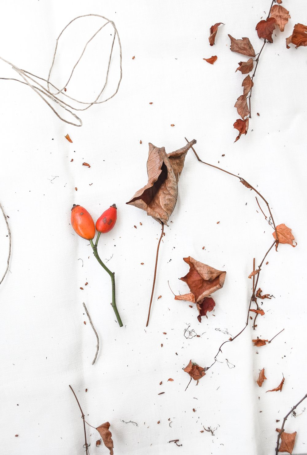 万圣节花的季节性花环