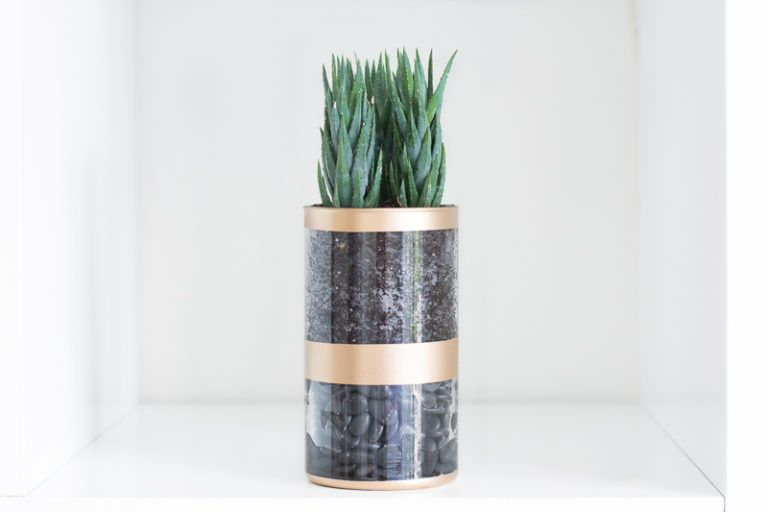 upcycled-painted-planter-succulent