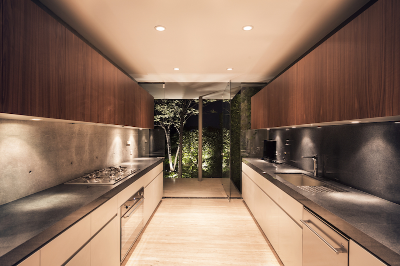 Caucaso House kitchen with pivot door