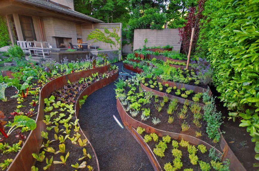 Corten planters for gardening