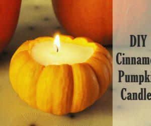 DIY Cinnamon Pumpkin Candle – Create Fall's Favorite Aroma