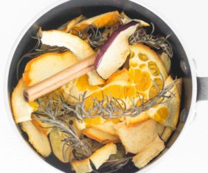 DIY Simple Fall Stovetop Potpourri