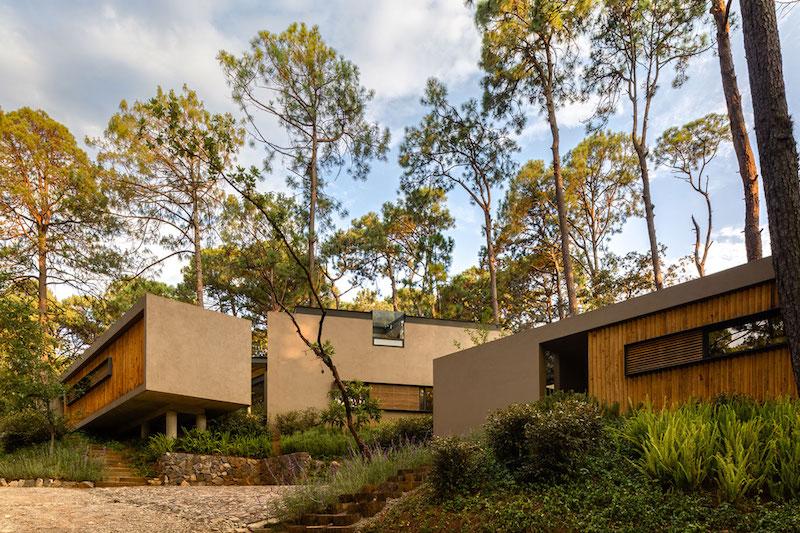 Five Houses condominium surrounded by lush vegetation